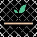 Soil Roots Plant Icon