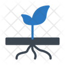 Roots Plant Icon