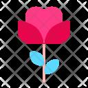 Rose Flower Romance Icon