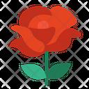 Rose Love Flower Love Icon
