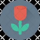 Rosebud Rose Flower Icon