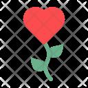 Flower Rose Blossom Icon