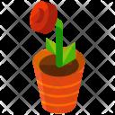 Rose Flower Vase Icon