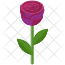 Rose Love Flower Icon