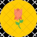Rose Flower Easter Icon
