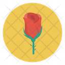 Flower Love Rose Icon