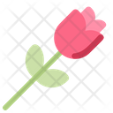 Rose Flower Romance Icon