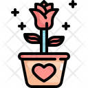 Rose Pot Valentines Icon