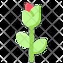 Groundhog Day Rose Flower Icon