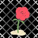 Rose Flower Greenery Icon