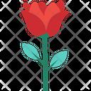 Rosebud Flower Blooming Icon