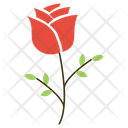 Rose Flower Love Icon