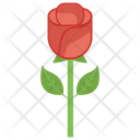Flower Nature Rose Icon