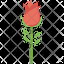 Rose Flower Wedding Flower Icon