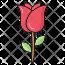 Rose Propose Motherday Icon