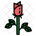 Rose Love Romance Icon