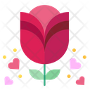 Rose Flower Botanical Icon