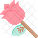 Rose Flower Beauty Icon