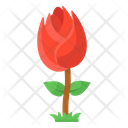 Flower Rose Garden Flower Icon