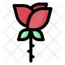 Rose Flower Floral Icon