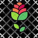 Rose Flower Petal Icon