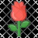 Flower Rose Fragrance Icon