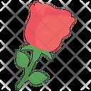 Rose Red Rose Valentines Icon