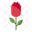 Rose Flower Love Icon