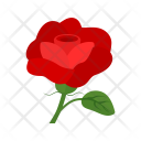 Rose Flower Nature Icon