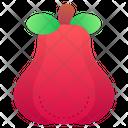 Rose Apple Food Vegan Icon