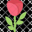 Rose Ecology Nature Icon