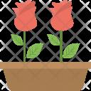 Rose Plant Flower Icon