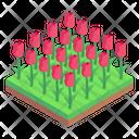 Roses Field Flowers Garden Floral Garden Icon