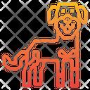 Rottweiler Dog Animal Icon