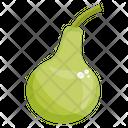 Round Gourd Vegetable Healthy Diet Icon