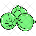 Round Gourds Organic Vegetable Natural Food Icon