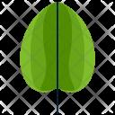 Round Greenery Leaf Icon