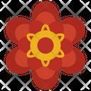 Round Petal Flower Icon