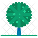 Rounded Tree Forest Icon