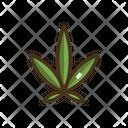 Ruderalis Icon