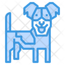 Russel Terrier Animal Pet Icon