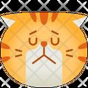 Sad Emoticon Cat Icon
