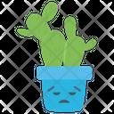 Sad Cactus Jade Plant Cactus Icon