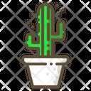Saguaro Cactus Succulent Icon