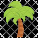 Sahara Palm Tree Icon