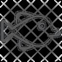 Sailfin Tang Specie Creature Icon
