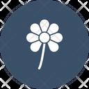 Saint Patricks Flower Icon