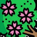 Sakura Cherry Blossom Flower Icon