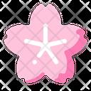 Sakura Cherry Blossom Icon