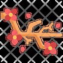 Sakura Leaf Leaves Icon